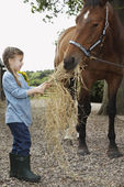 Girl Feeding a Horse — Stock Photo