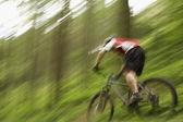 Mountain Biker Cycling Downhill — Stock Photo