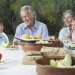 Grandparents with grandchildren — Stock Photo #33880067