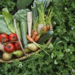 Fruit and vegetable basket — Stock Photo #33880559