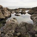 Rocky seashore — Stock Photo #33886437