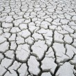 Cracked dry earth — Stock Photo #33886835