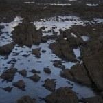 Rocky seashore — Stock Photo #33887989
