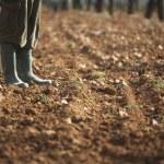 Man in galoshes on soil — Stock Photo #33888587