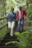 Woman and senior man on trail in forest — Stock Photo