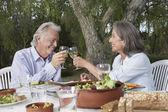 Casal brindando — Fotografia Stock