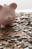 Piggy bank and vast amount of coins — Stock Photo