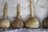 Gourds on Shelf — Stock Photo