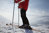 Skier in mountains — Foto Stock
