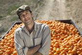 Farmer standing by truck with oranges — Stock Photo