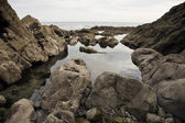 岩质海岸 — 图库照片
