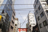 Electrical Lines and Torii Gate — Stock Photo