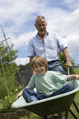 Grandfather pushing boy in wheel barrow — Stock Photo