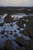 Bord de mer rocheux — Photo