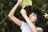 Woman Examining Leaf — Stock Photo