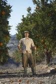 Farmer in orchard — Stock Photo