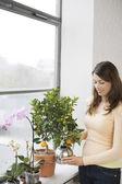 Woman tending plants — Stock Photo