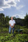 Man gardening — Stock Photo
