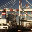 Containership in dock — Stock Photo #33890757