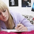 Girl writing diary — Stockfoto #33891039