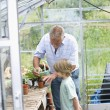 Boy planting flowers with grandfather — Stock Photo #33893007