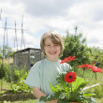 Boy holding flowers in garden — Stock Photo #33893673
