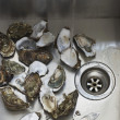 Stock Photo: Oysters in kitchen sink