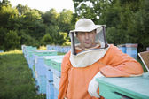 Beekeeper Standing in Apiary — Stock Photo