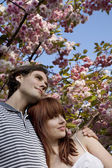 Couple Under a Blossoming Tree — Stock Photo