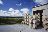 Wine stored in barrels — Stock Photo