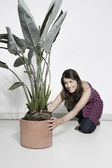 Woman placing large potted plant — Stock Photo