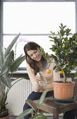 Woman tending potted orange tree — Stock Photo
