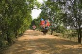 Bicycles with Festive Decorations — Stok fotoğraf
