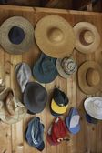 Collection of hats — 图库照片