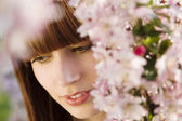 Woman Under a Blossoming Tree — Stock Photo