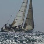 Постер, плакат: Crew members on sailboat