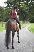 Horseback rider sitting on brown horse — Stock Photo