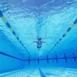 Male swimmer in pool — Stock Photo