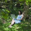 Pregnant woman using laptop in woods — Stock Photo #33984989