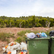 Overflowing bins next to Orange Orchard — Stock Photo #33988225