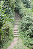 Path of stairs in British Park — Stock Photo