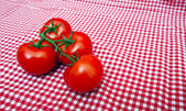 Red Vine tomatoes — Stock Photo