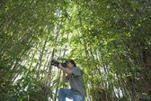 Photographer adjusts camera lens in bamboo forest — Stock Photo