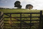 Yorkshire Dales — Stock Photo