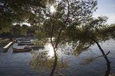 Ake, umgeben mit Bäumen — Stockfoto