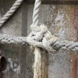 Tied knot rope — Stock Photo #33990633