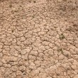 Dry cracked red soil — Stock Photo