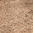 Stock Photo: Dry cracked red soil