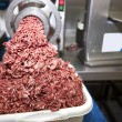 Machine mincing meat — Stock Photo