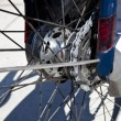 Stock Photo: Rear bicycle wheel